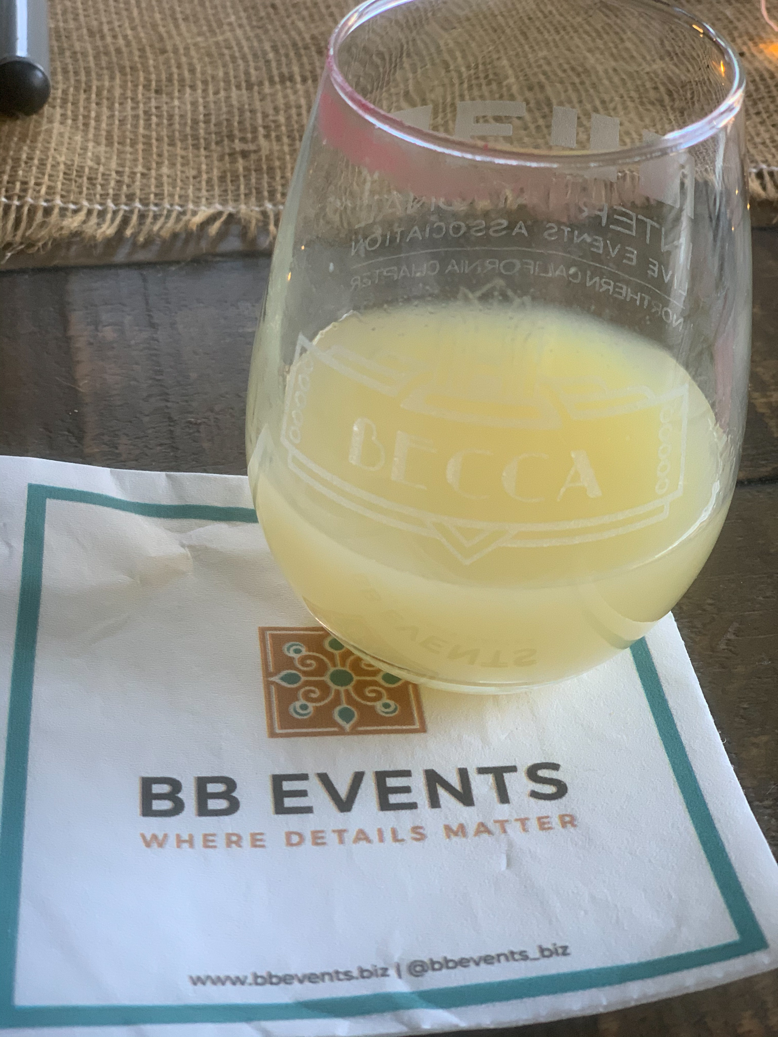 reno-tahoe-promotions-and-becca-bloom-screen-printed-products-and-virtual-events