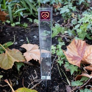 "Flood Gates 6"" Domed Rain Gauge"